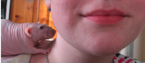 Libby and her rat3