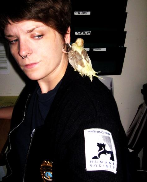 Mr. seymour on my shoulder