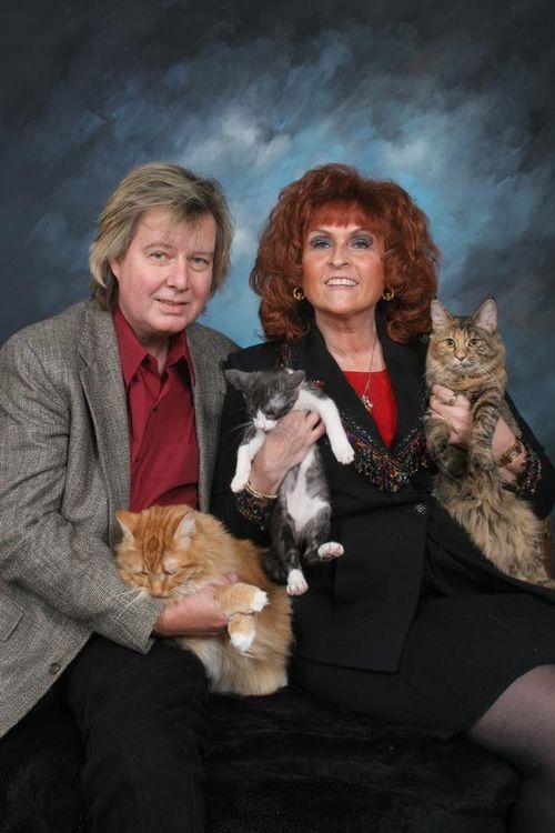 Kitty_family