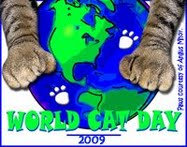 World Cat Day Aug 8, 09