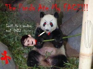 Evil_panda_courtney_arkansas_2