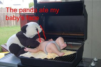 Panda_ate_nelsonwashington_2