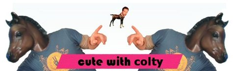 Coltybanner_tx_willy_5