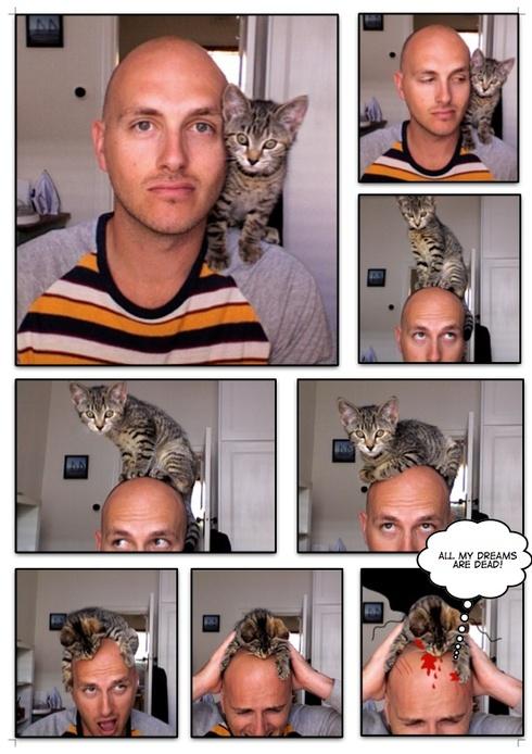 Daniel_vampire_cat