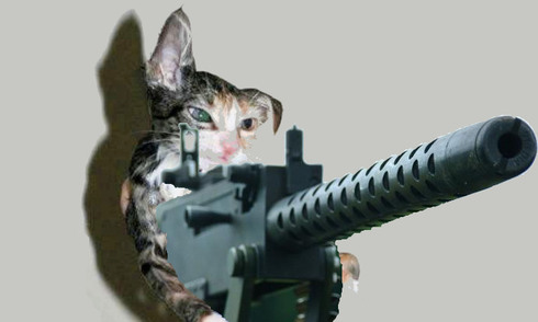 Machinegun_kitty_scott_michigan