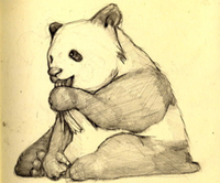 Panda_by_olle